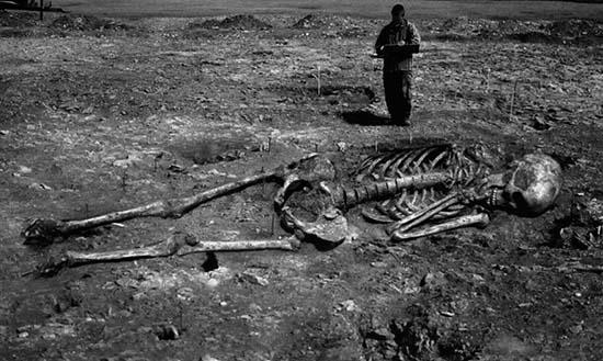 Montaje de esqueleto gigante